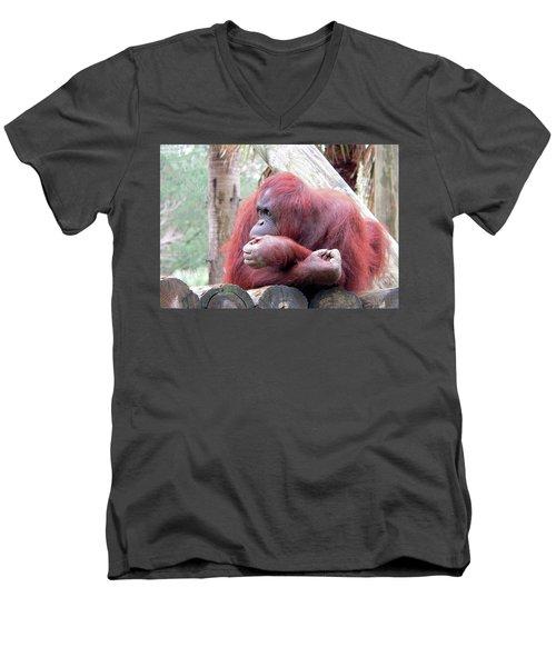 Orangutang Contemplating Men's V-Neck T-Shirt by Rosalie Scanlon