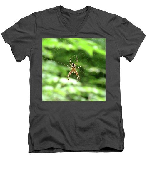 Orb Weaver Men's V-Neck T-Shirt