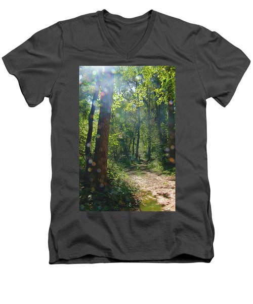 Orbs In The Woods Men's V-Neck T-Shirt