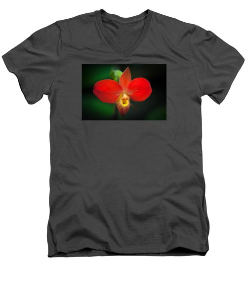 Orchard  Men's V-Neck T-Shirt by Catherine Lau