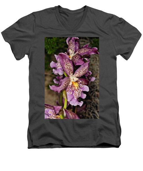 Orchid 347 Men's V-Neck T-Shirt