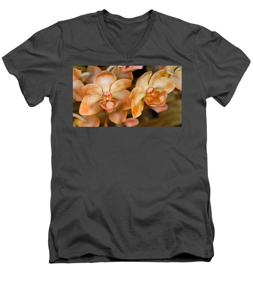 Orchid 392 Men's V-Neck T-Shirt