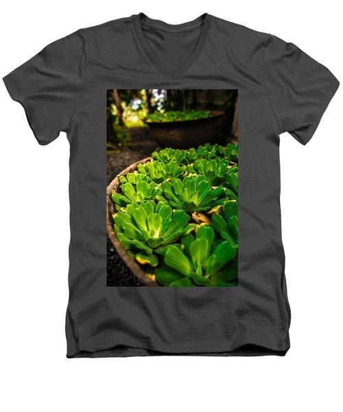 Orchid Pond Men's V-Neck T-Shirt