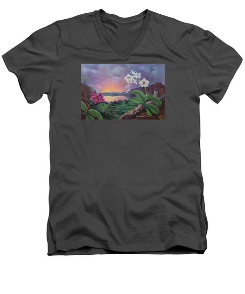 Orchids And Mystery Men's V-Neck T-Shirt