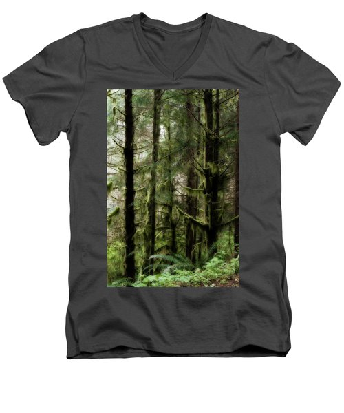 Oregon Old Growth Coastal Forest Men's V-Neck T-Shirt