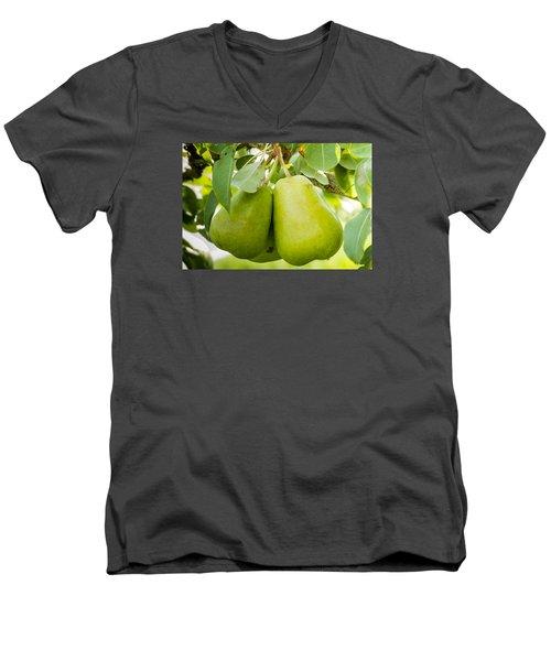 Organic Pears Men's V-Neck T-Shirt by Teri Virbickis