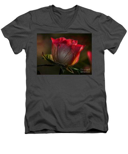 Organic Rose Men's V-Neck T-Shirt