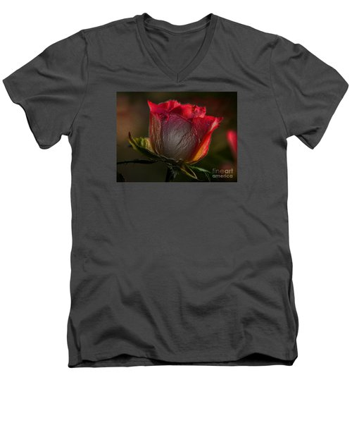 Organic Rose Men's V-Neck T-Shirt