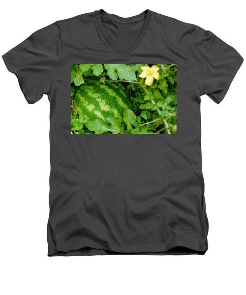 Organic Watermelon Men's V-Neck T-Shirt