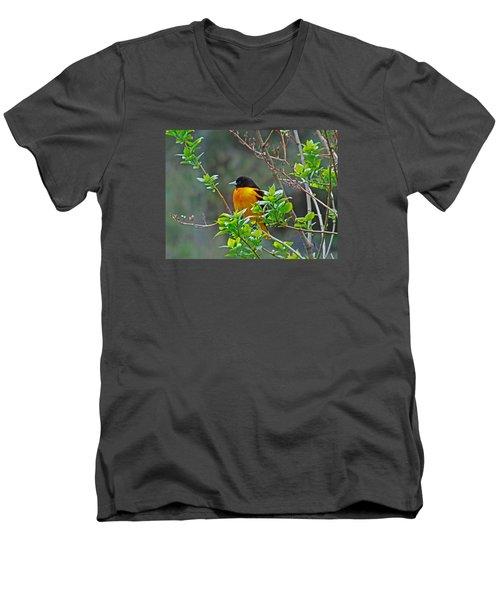 Oriole On The Lilac Men's V-Neck T-Shirt by Larry Capra