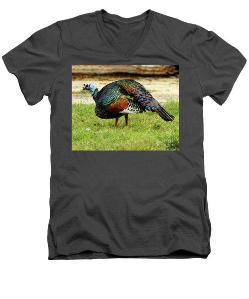 Oscillated Turkey Men's V-Neck T-Shirt