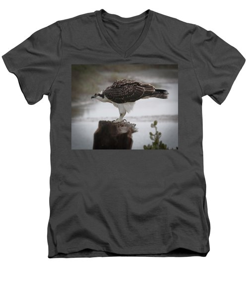 Osprey Men's V-Neck T-Shirt