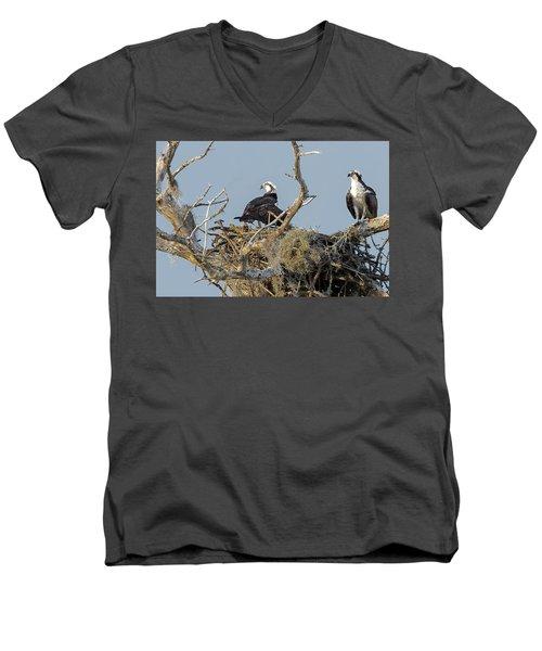 Osprey Family Men's V-Neck T-Shirt