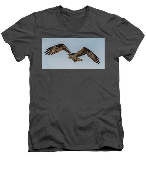 Osprey Flying Men's V-Neck T-Shirt by Paul Freidlund