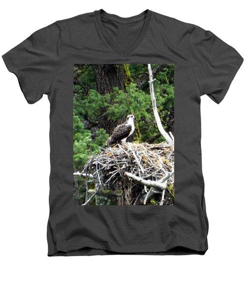 Osprey In Nest Men's V-Neck T-Shirt