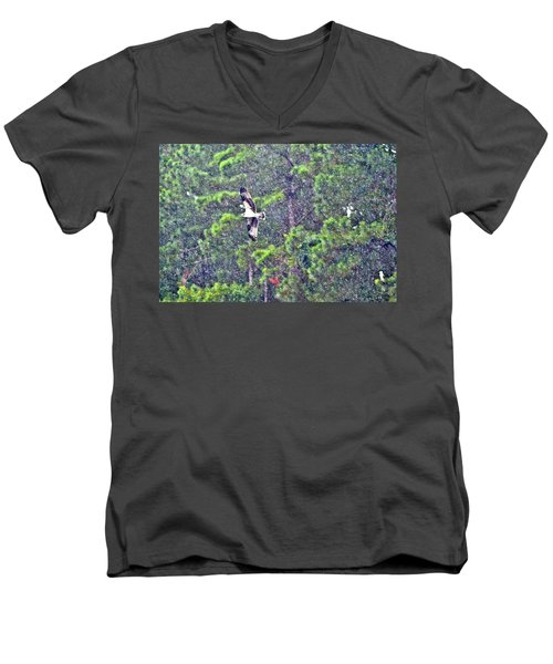 Osprey In Rain Men's V-Neck T-Shirt by James Potts