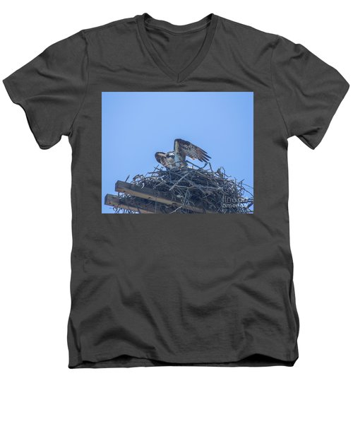 Osprey Nest II Men's V-Neck T-Shirt