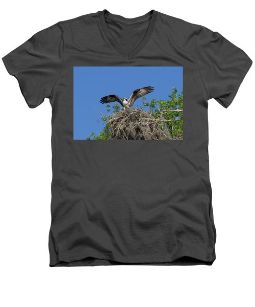 Osprey On Nest Wings Held High Men's V-Neck T-Shirt