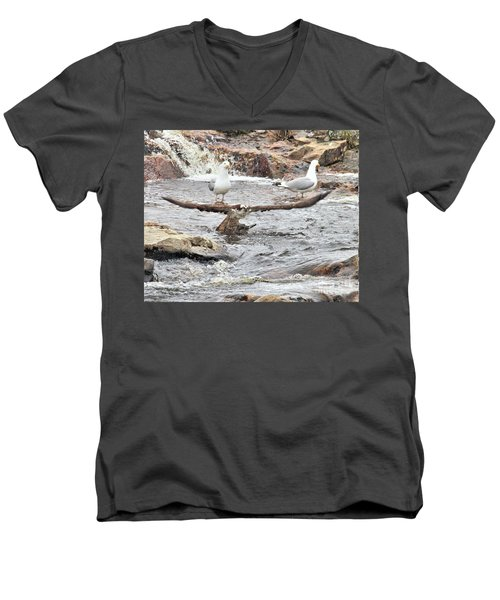 Men's V-Neck T-Shirt featuring the photograph Osprey Takes Fish From Gulls by Debbie Stahre