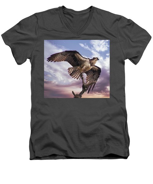 Osprey Wing Men's V-Neck T-Shirt