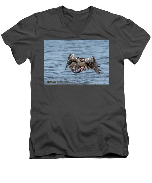 Osprey With Catch 9108 Men's V-Neck T-Shirt
