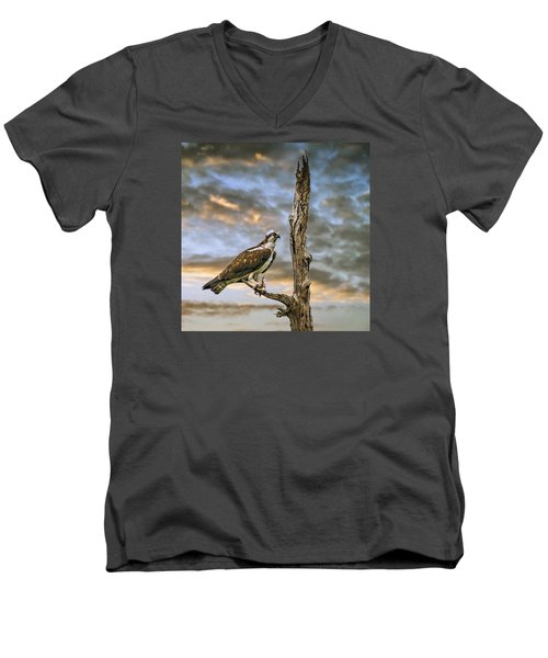 Men's V-Neck T-Shirt featuring the photograph Osprey With Supper by Brian Tarr