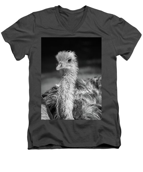 Ostrich Black And White Men's V-Neck T-Shirt