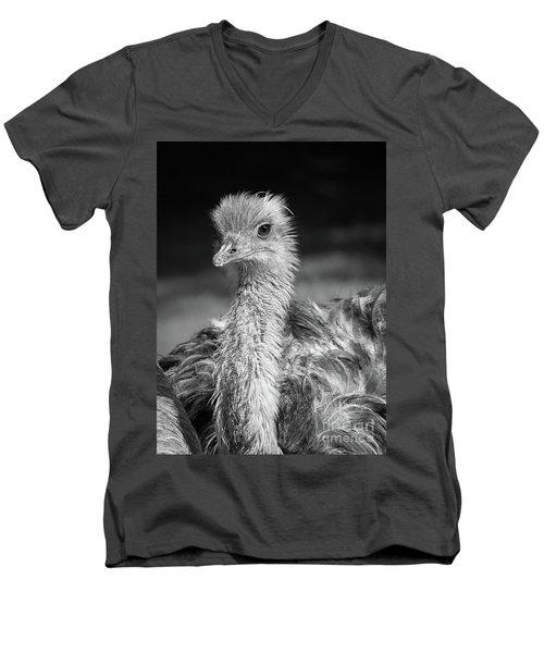 Ostrich Black And White Men's V-Neck T-Shirt