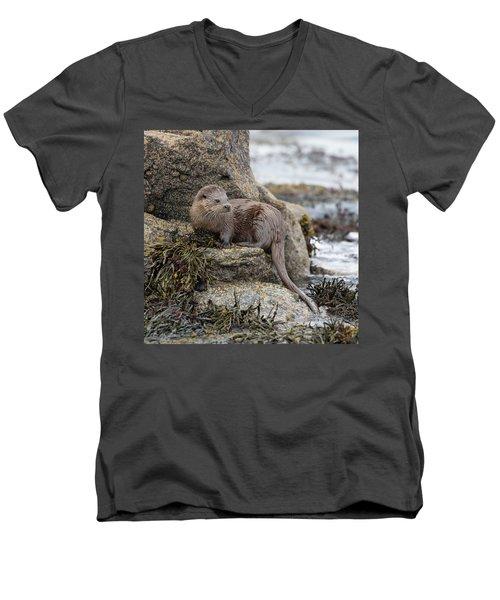 Otter Beside Loch Men's V-Neck T-Shirt