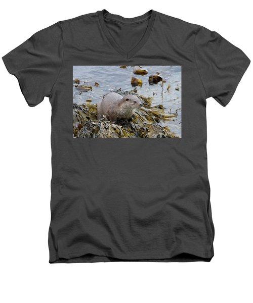 Otter On Seaweed Men's V-Neck T-Shirt
