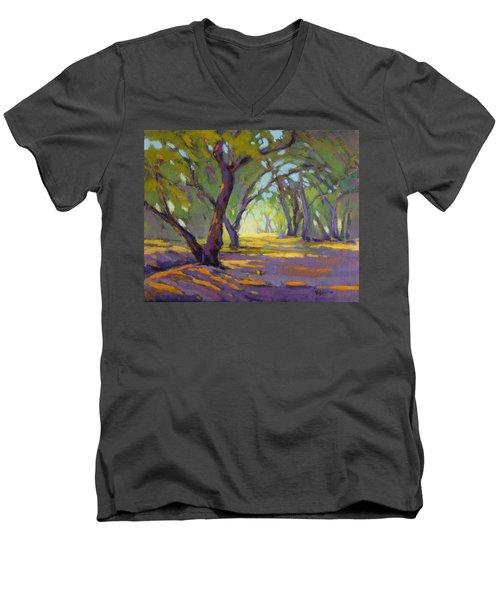 Our Secret Place 4 Men's V-Neck T-Shirt