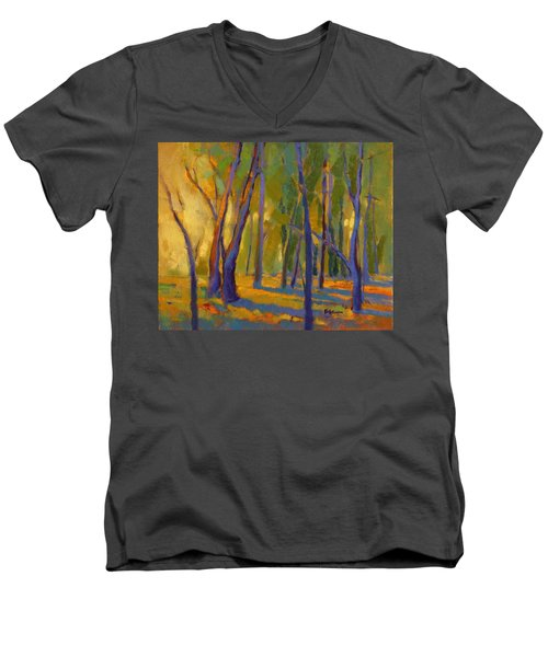Our Secret Place 6 Men's V-Neck T-Shirt