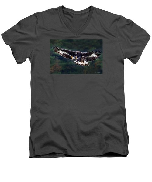 Out Of The Forest Men's V-Neck T-Shirt by CR  Courson