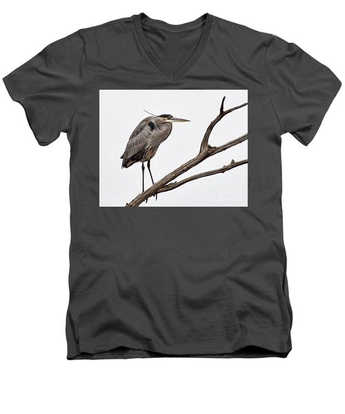 Out On A Limb Men's V-Neck T-Shirt by Tamera James