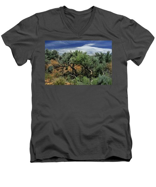 Out On The Mesa 3 Men's V-Neck T-Shirt