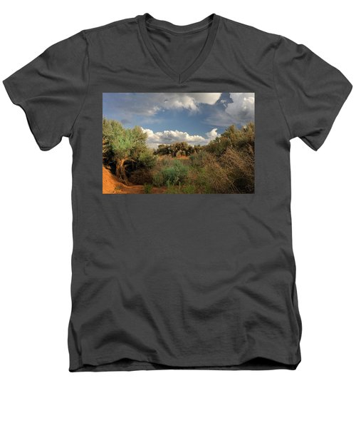 Out On The Mesa 4 Men's V-Neck T-Shirt
