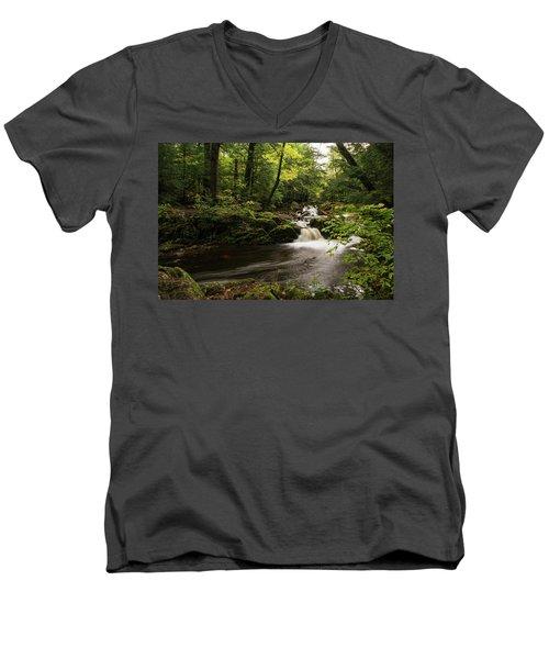 Overlooked Falls Men's V-Neck T-Shirt
