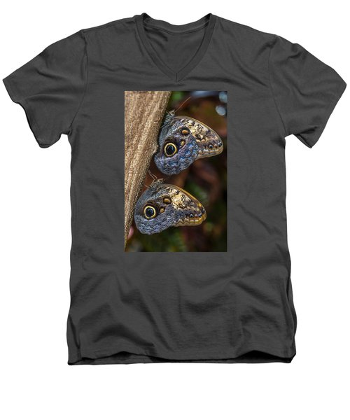 Men's V-Neck T-Shirt featuring the photograph Owl Butterflies by Jerry Cahill