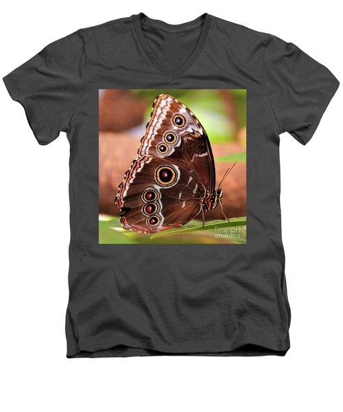 Owl Butterfly Portrait Men's V-Neck T-Shirt