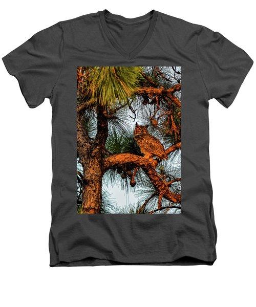 Owl In The Very Last Sunset Light Men's V-Neck T-Shirt