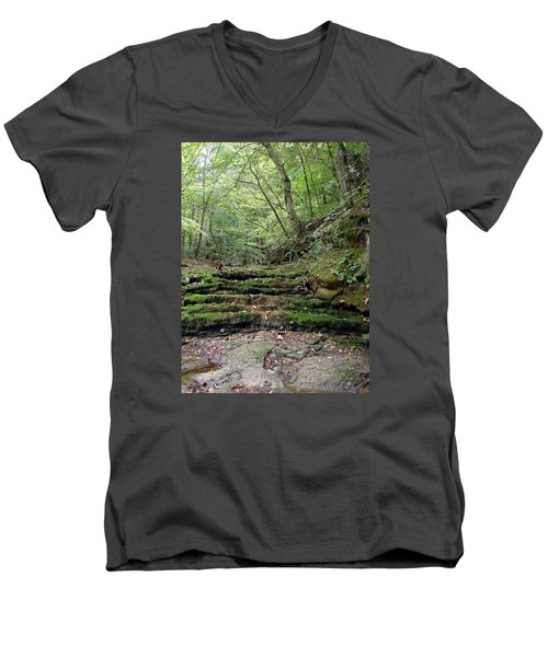 Ozark Creek Men's V-Neck T-Shirt