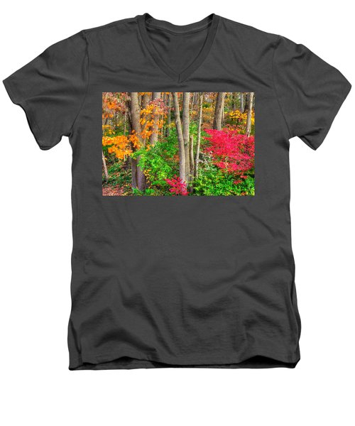 Pa Country Roads - Autumn Flourish - Harmony Hill Nature Area - Chester County Pa Men's V-Neck T-Shirt
