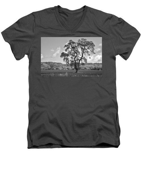 Pacheco Pass Men's V-Neck T-Shirt by Sonny Marcyan