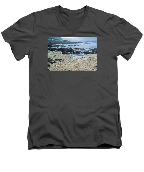 Pacific Gift Men's V-Neck T-Shirt by Dale Stillman