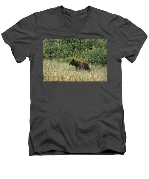 Pagosa Momma Bear Men's V-Neck T-Shirt