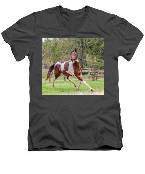 Paint Mare In Field Men's V-Neck T-Shirt by Gwen Vann-Horn
