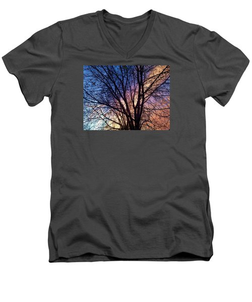 Paintbrush II Men's V-Neck T-Shirt