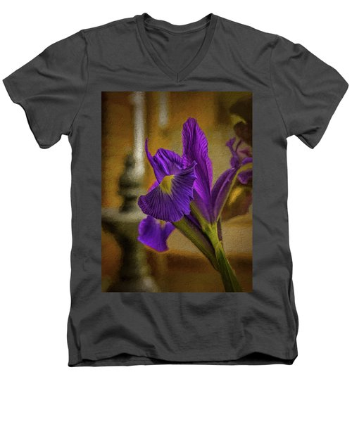 Painted Iris Men's V-Neck T-Shirt
