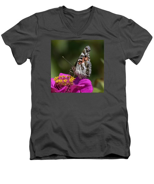 Painted Lady Men's V-Neck T-Shirt by David Lester