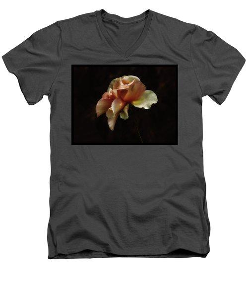 Painted Roses Men's V-Neck T-Shirt by Elaine Malott